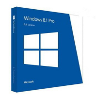 Windows 8.1  Professional 64-Bit English DVD/OEM (Full version)